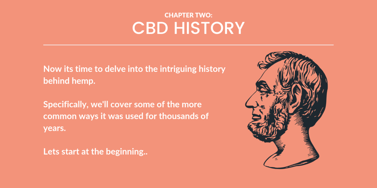 CBD Oil: The Definitive Guide (2019)