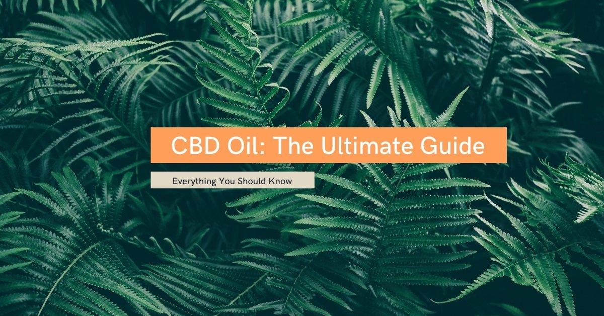 Ultimate Guide to CBD Oil
