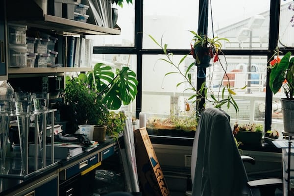 Lab Sample Window Area