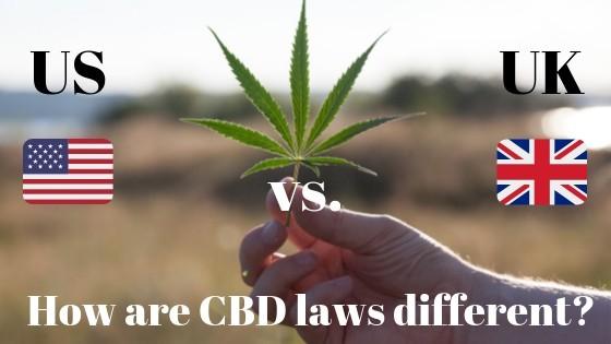 US vs UK CBD laws