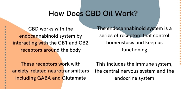 how does CBD oil work for anxiety