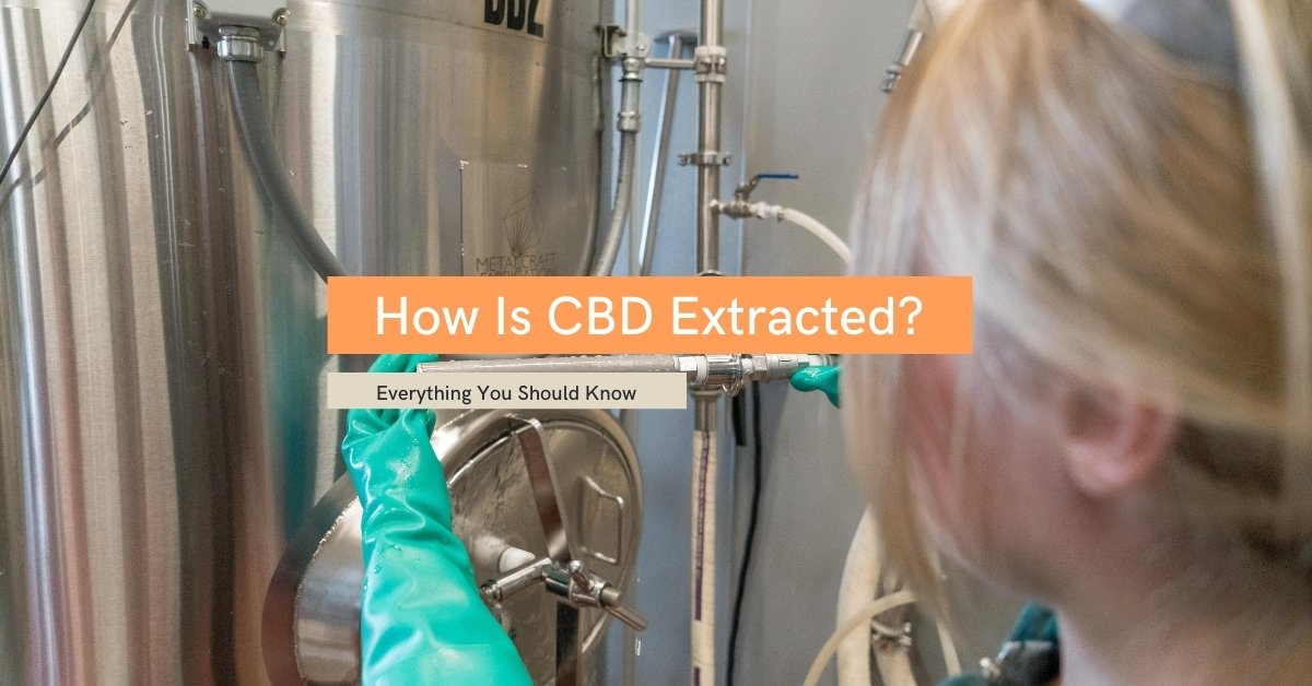 How Is CBD Extracted