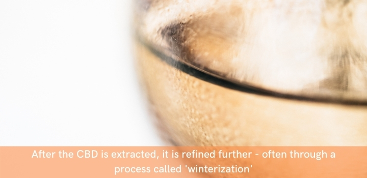 Winterization of CBD extract