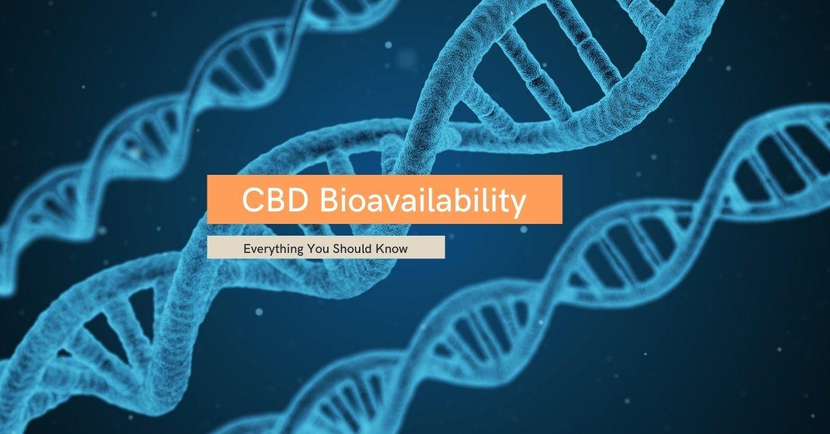 CBD Bioavailabbility