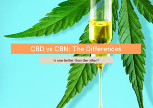 CBD vs CBD: The differences