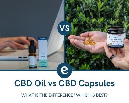 CBD oil vs CBD capsules