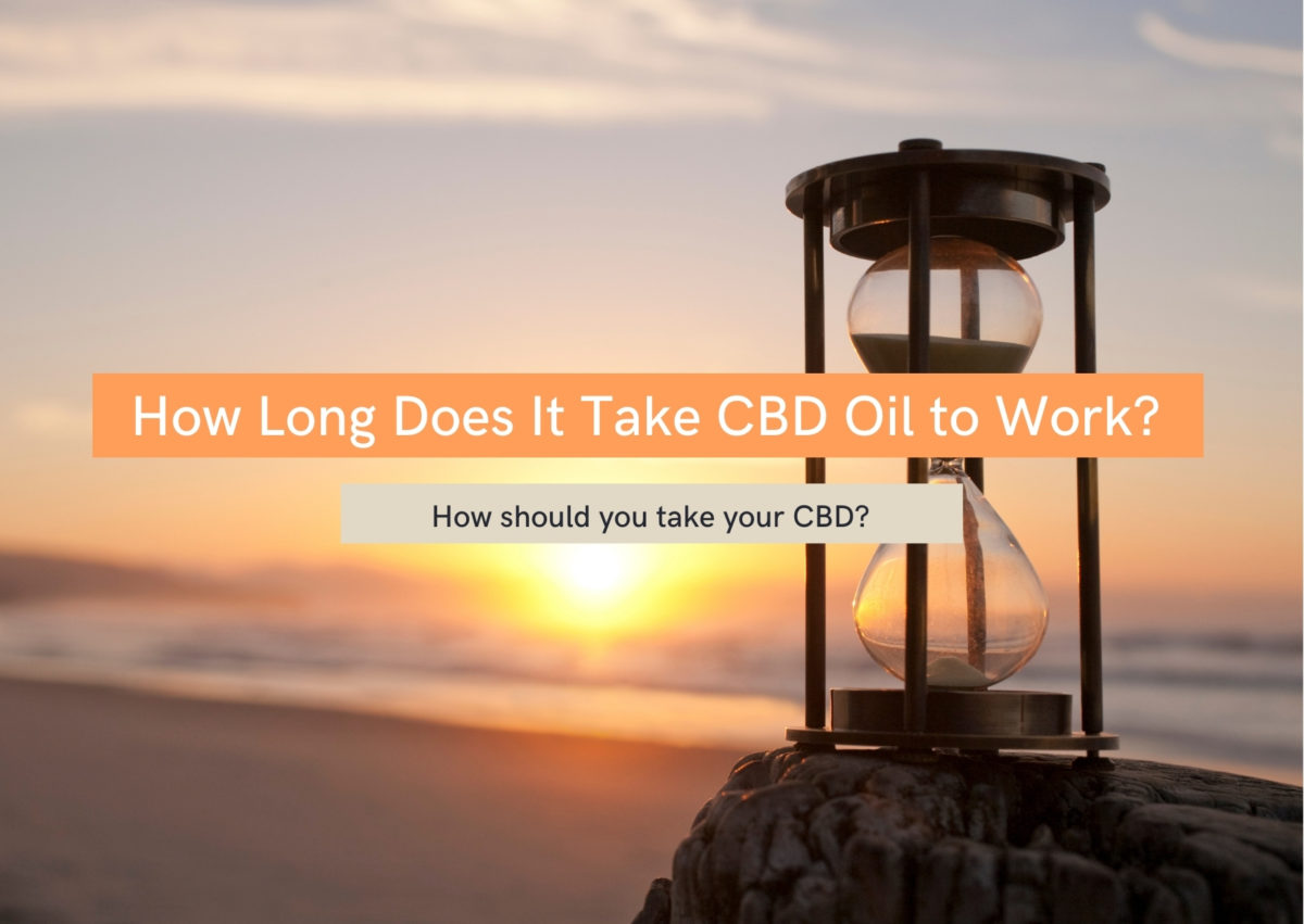 How long does it take CBD oil to work