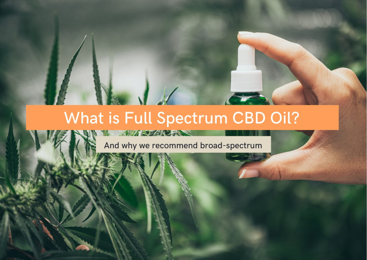 What is full spectrum CBD oil