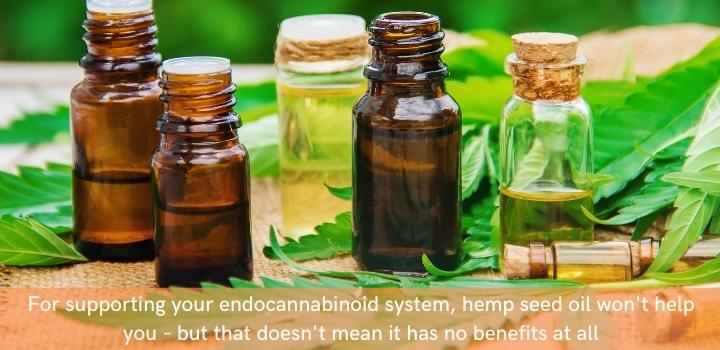 Is hemp seed oil as good as hemp oil