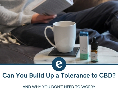 Can you build up a tolerance to CBD