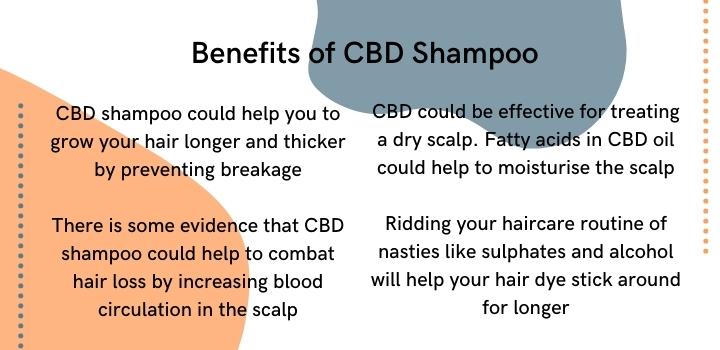 benefits of cbd shampoo