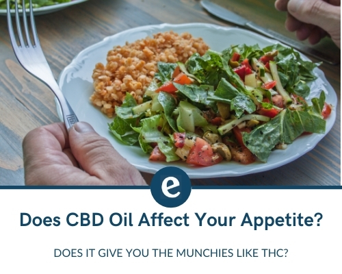 Does CBD oil affect your appetite