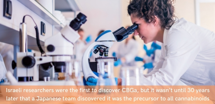 How was CBGa discovered