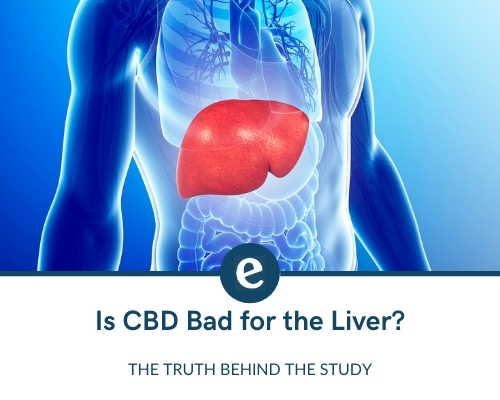 is cbd oil bad for the liver