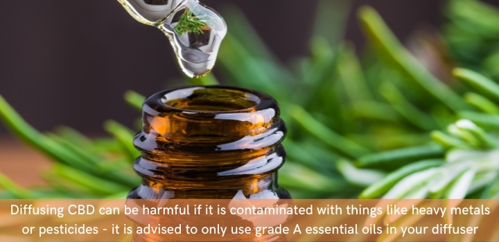 Is CBD oil safe to use in a diffuser