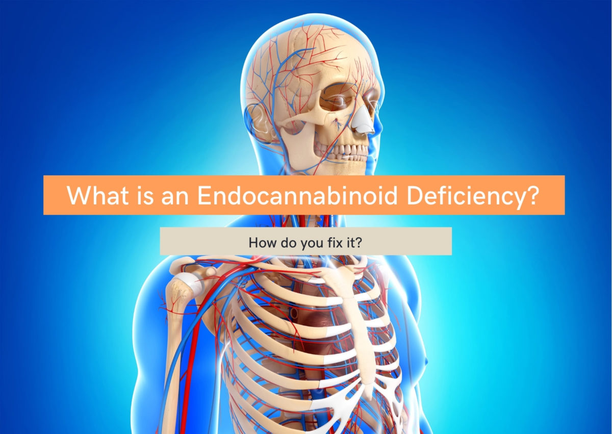 What is an endocannabinoid deficiency