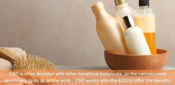 What is cbd shampoo
