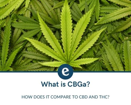 what is cbga